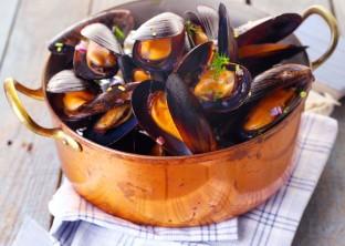 Scoici-Mussels